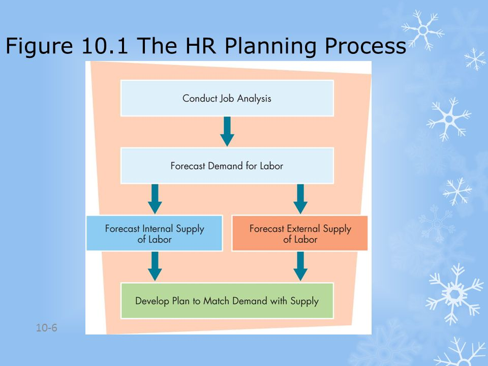 Figure 10.1 The HR Planning Process
