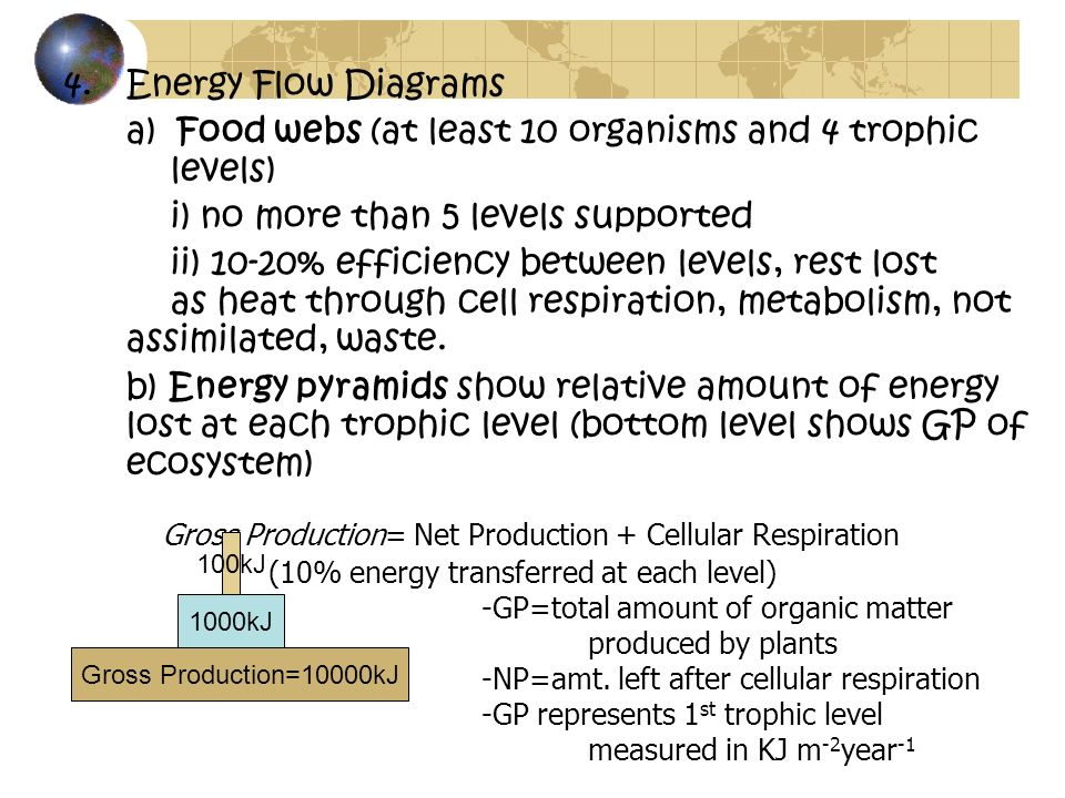 Energy Flow Diagrams a) Food webs (at least 10 organisms and 4 trophic levels) i) no more than 5 levels supported.
