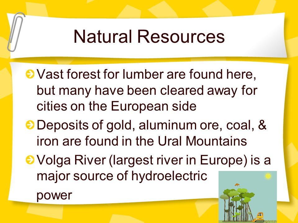 Natural Resources Vast forest for lumber are found here, but many have been cleared away for cities on the European side.