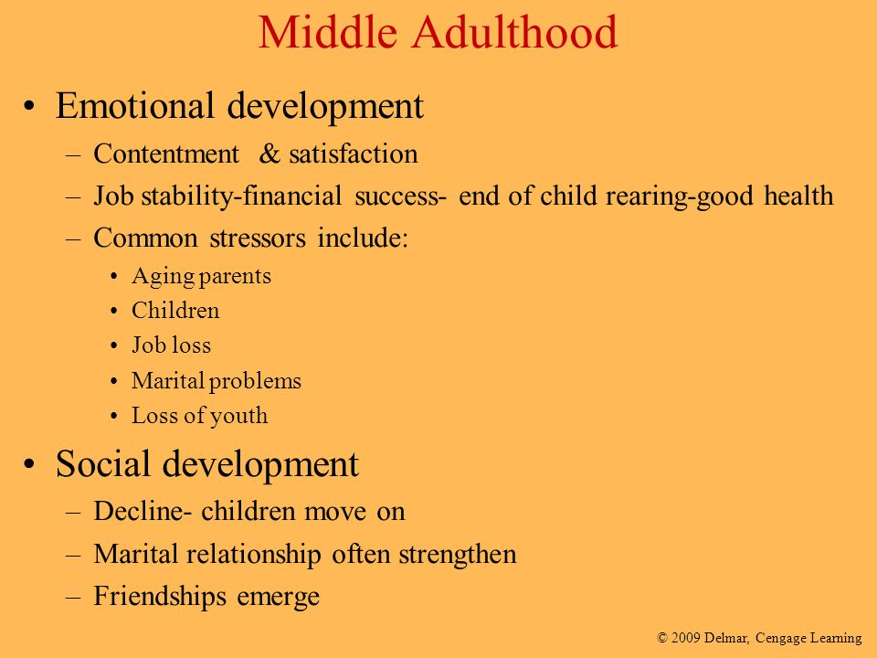 issues with social development in adults Healthy social-emotional development for infants and toddlers unfolds in an interpersonal context, namely that of positive ongoing relationships with familiar, nurturing adults young children are particularly attuned to social and emotional stimulation.