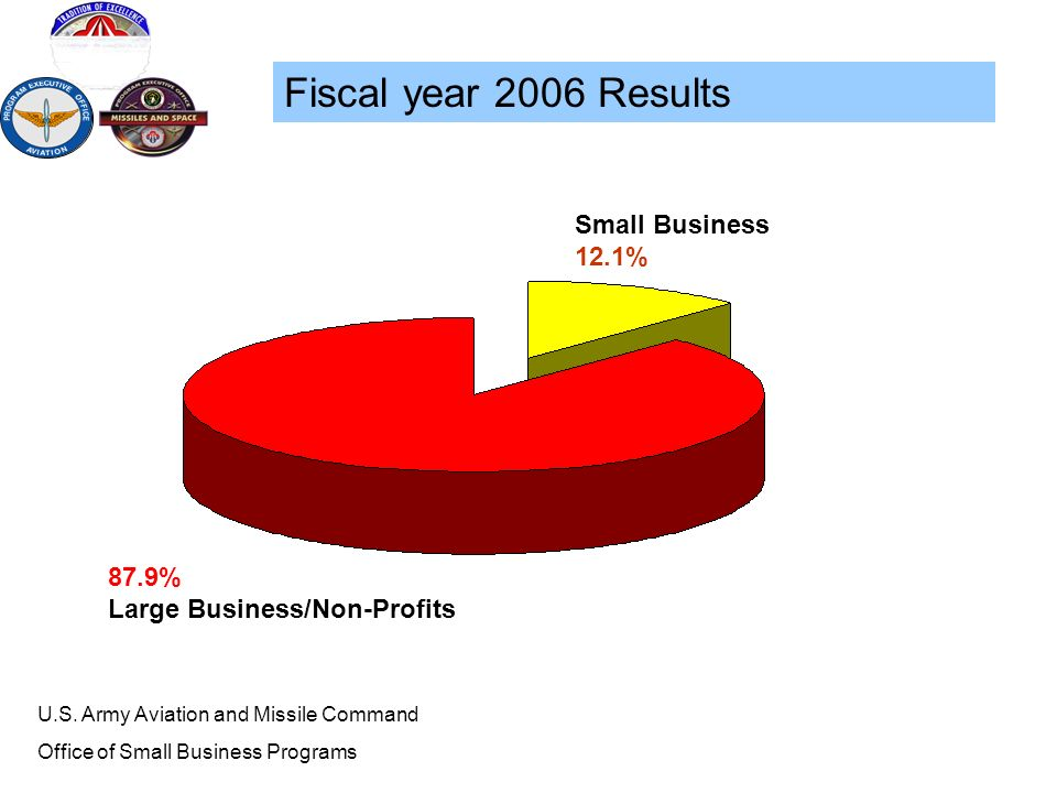 Fiscal year 2006 Results Small Business 12.1% 87.9%