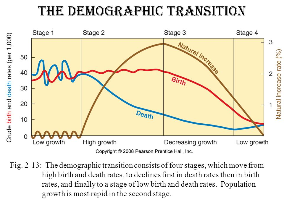 the demographic transition ppt download
