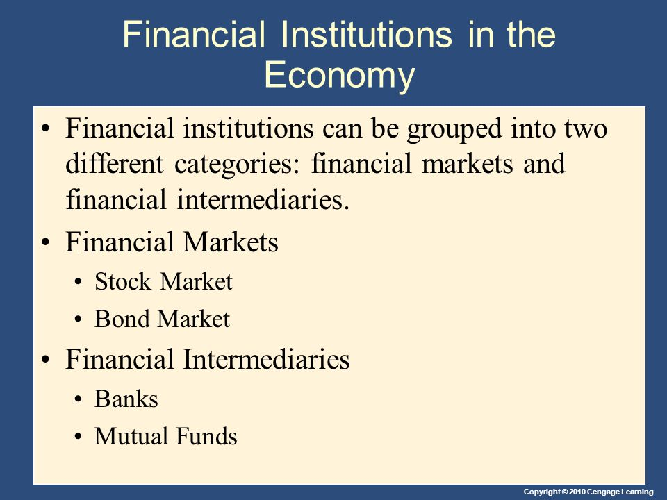 Financial Institutions in the Economy