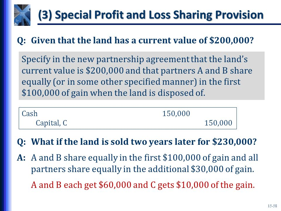 (3) Special Profit and Loss Sharing Provision