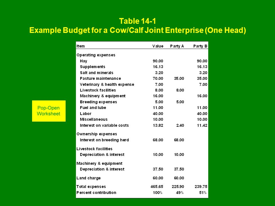 Table 14-1 Example Budget for a Cow/Calf Joint Enterprise (One Head)