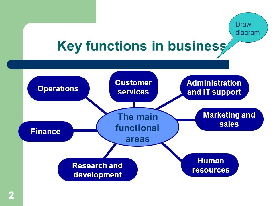 functional areas of business 2 essay Functional areas of business every organization big or small relies on a number of key functions that are vital for success small businesses may have one or two individuals but, in a big organization, a number of individuals with special qualifications are needed to perform different tasks or functions.