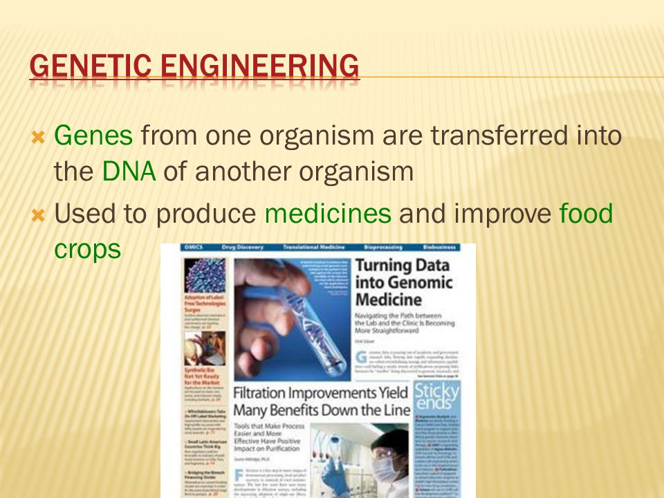 Genetic Engineering Genes from one organism are transferred into the DNA of another organism.