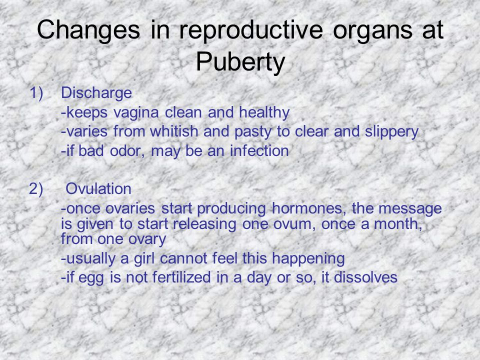 Changes in reproductive organs at Puberty