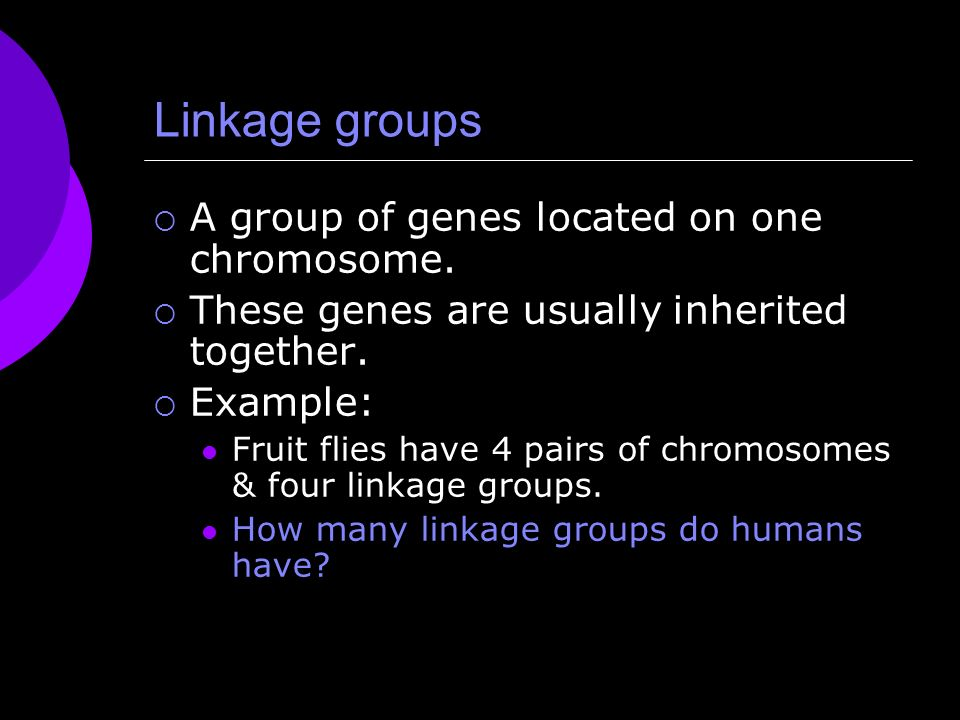 linkage groups in humans
