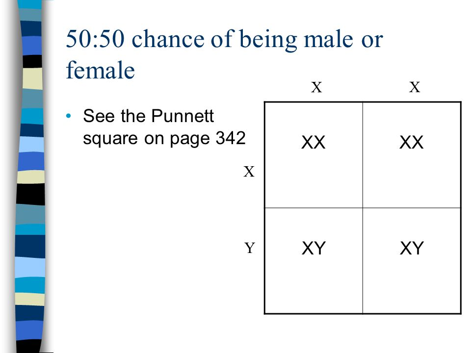 50:50 chance of being male or female