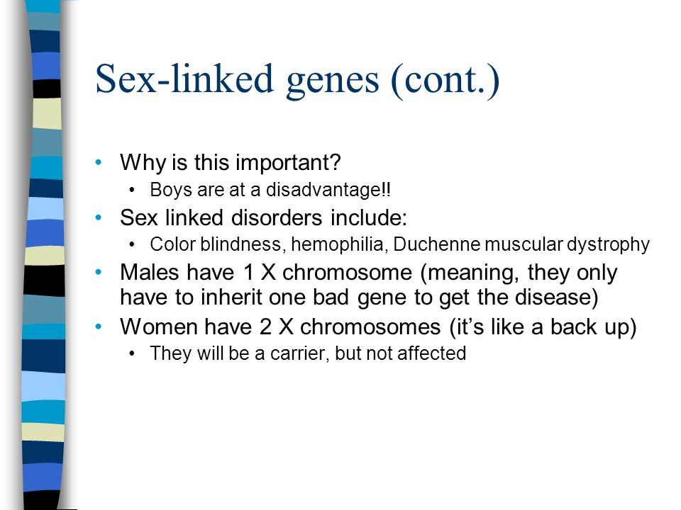 Sex-linked genes (cont.)