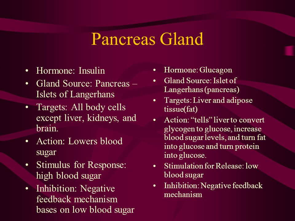 Pancreas Gland Hormone: Insulin