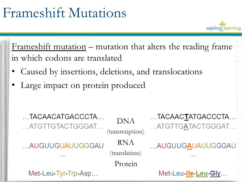 DNA Mutations Biology 6(E). - ppt video online download