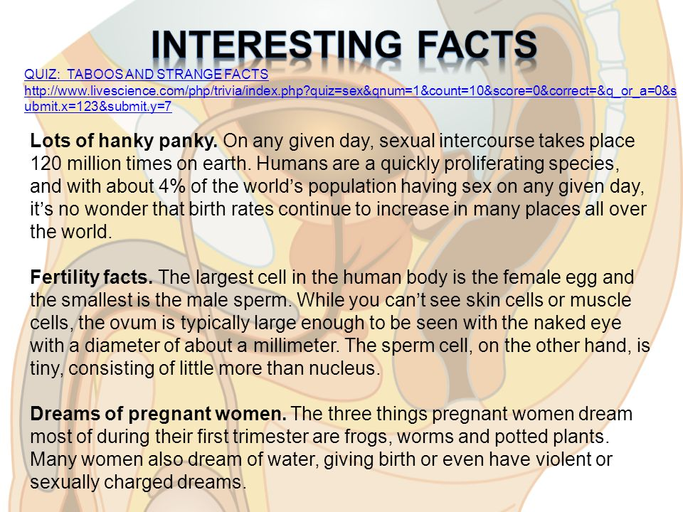 interesting facts about sexual intercourse