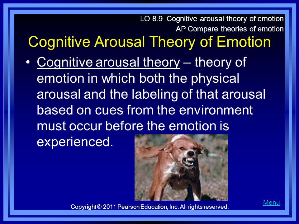 Cognitive Arousal Theory of Emotion