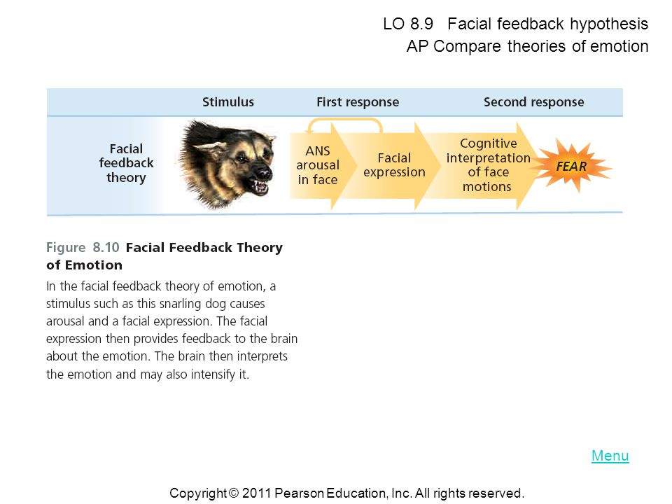 LO 8.9 Facial feedback hypothesis AP Compare theories of emotion