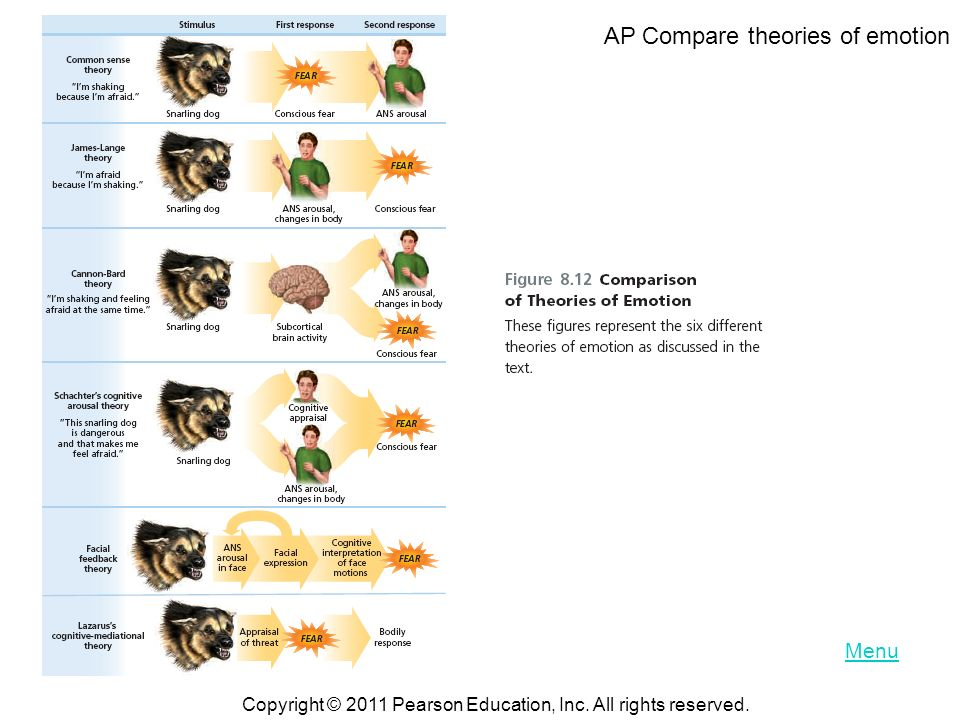 AP Compare theories of emotion