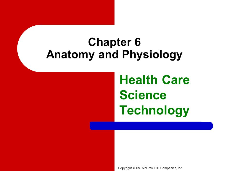 Chapter 6 Anatomy and Physiology - ppt download