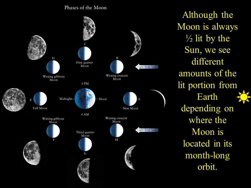Phases Of The Moon Ppt Video Online Download
