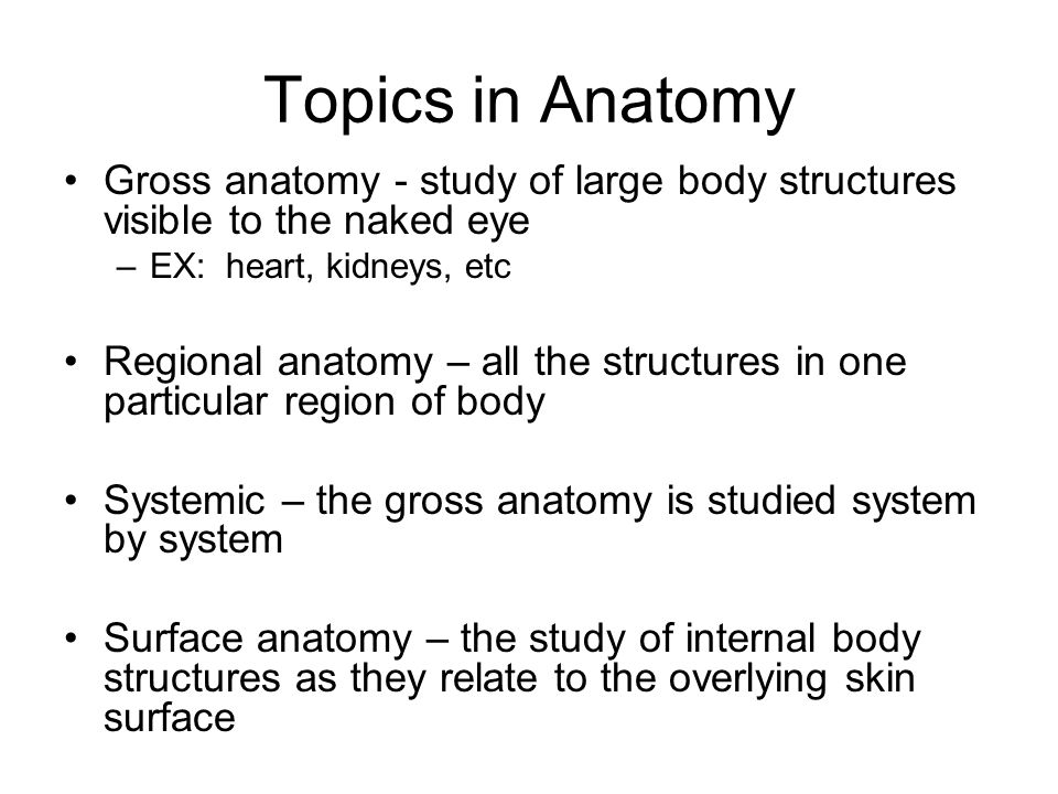 anatomy and physiology topics