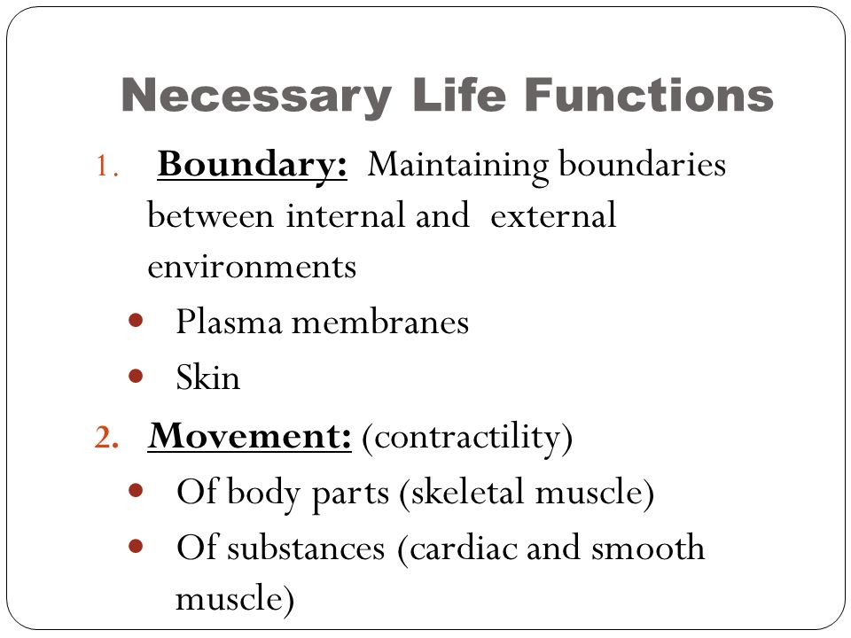 The Human Body: An Orientation: Part A - ppt video online download