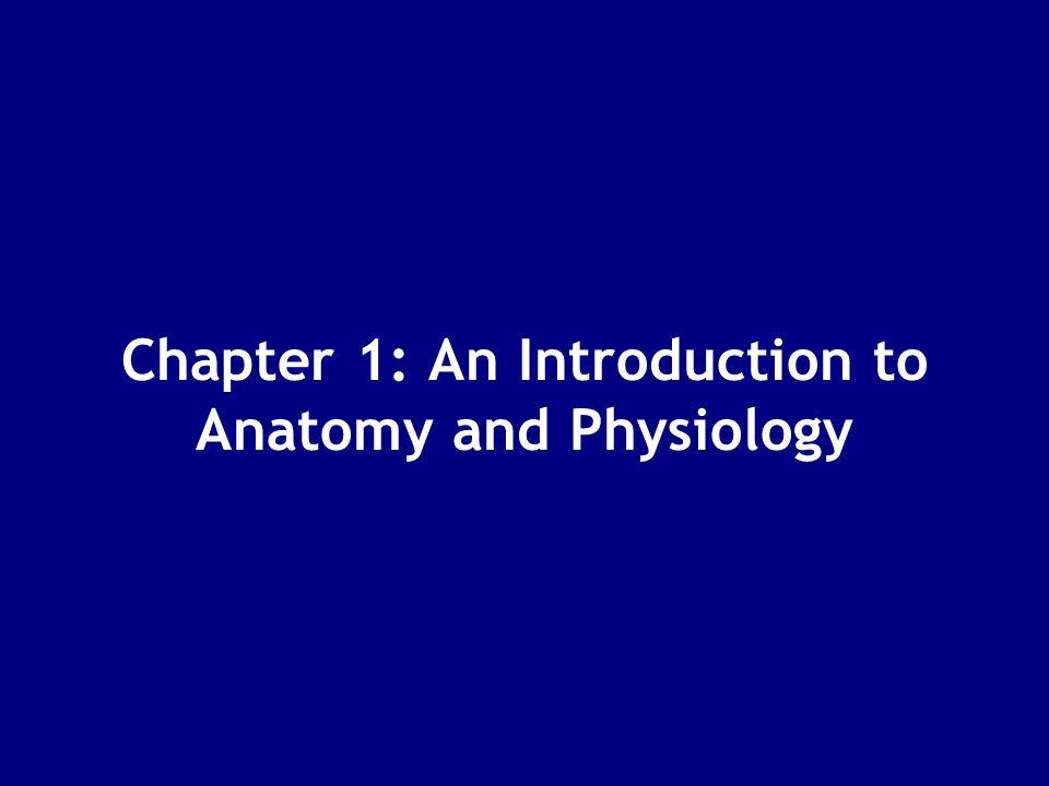 1 Levels of Organization Fundamentals of Anatomy & Physiology Unit ...