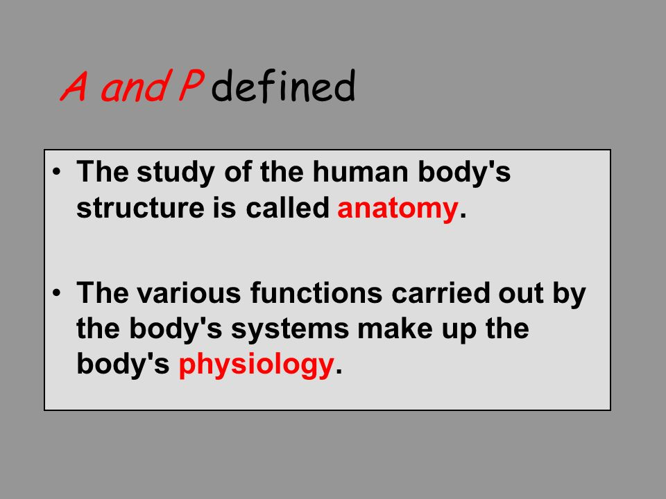 Chapter 1 An Introduction To The Structure And Function Of The