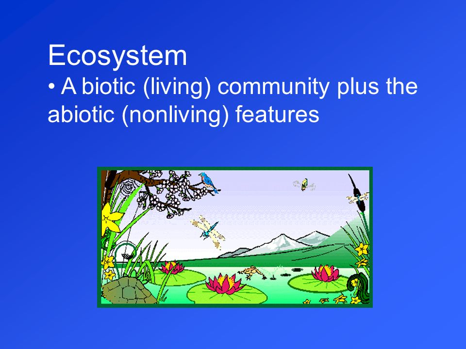 Ecosystem A biotic (living) community plus the abiotic (nonliving) features