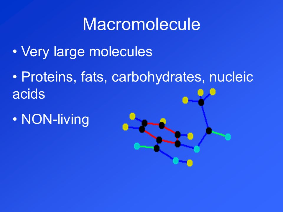 Macromolecule Very large molecules