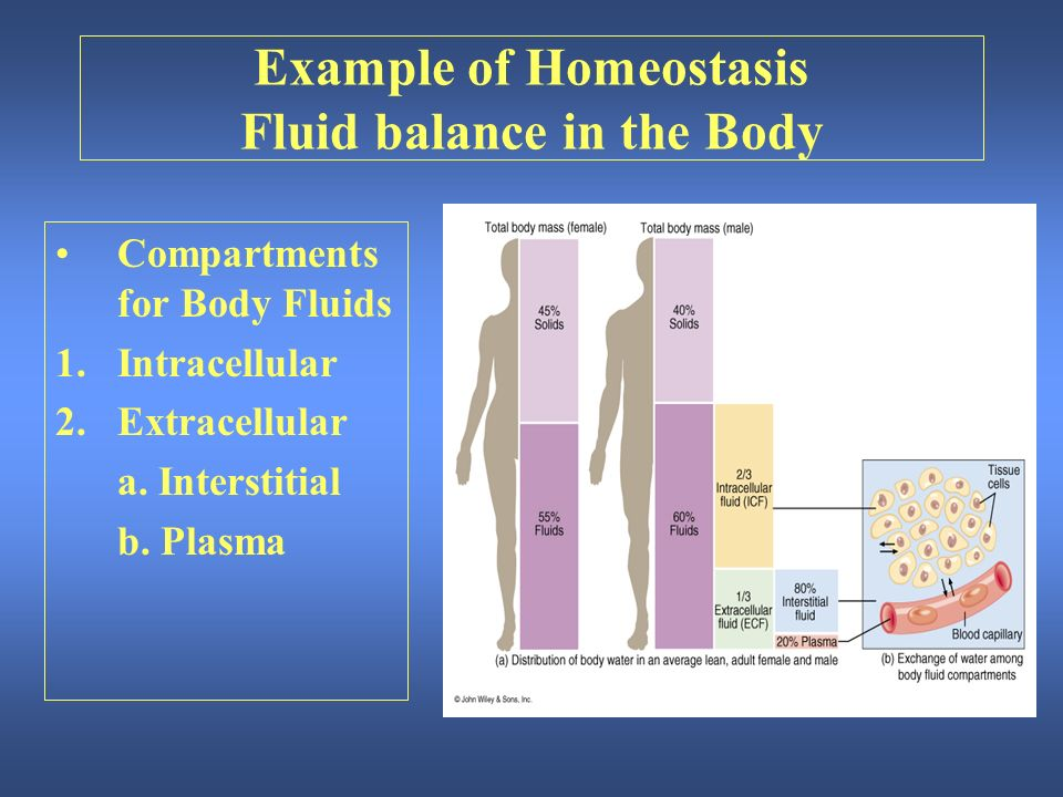 homeostasis inbalance that causes hypertension Do you have hormonal imbalance learn about the four common symptoms and easy ways to to it's the hormonal balance or bodily homeostasis that makes sure everything runs smoothly, and all if the cause isn't taken care off, the chronically elevated cortisol levels and suppressed thyroid can start.