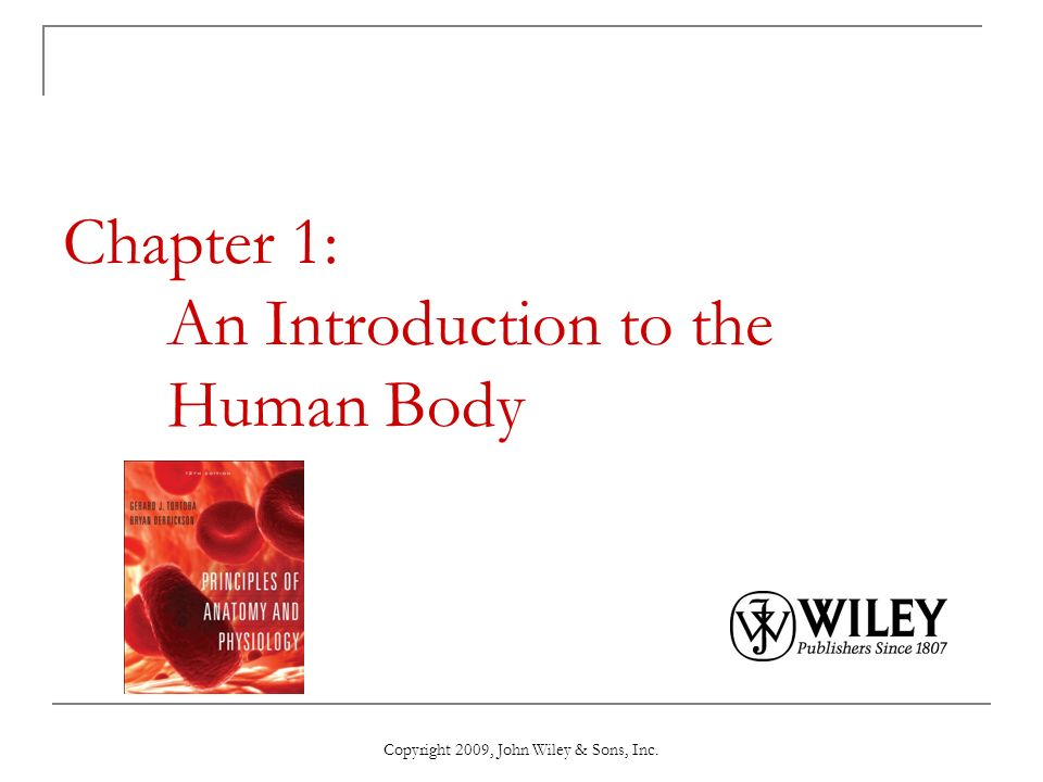 Chapter 1 An Introduction To The Human Body Ppt Download