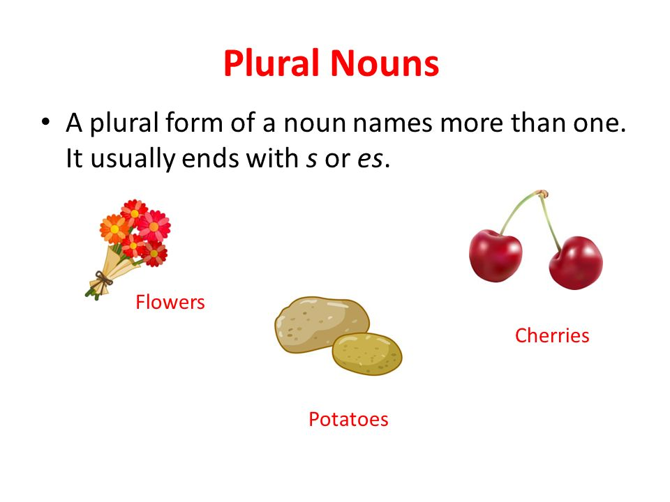Plural Nouns A plural form of a noun names more than one. It usually ends with s or es. Flowers. Cherries.