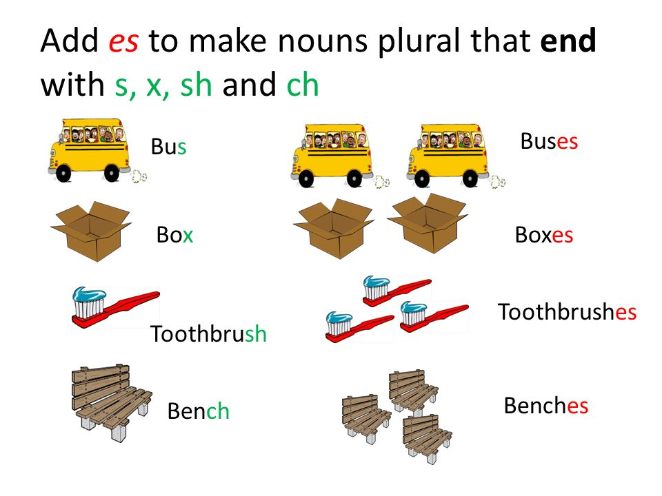 Add es to make nouns plural that end with s, x, sh and ch