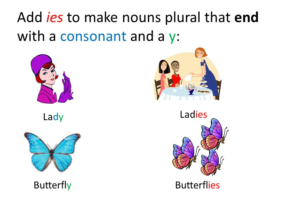 Add ies to make nouns plural that end with a consonant and a y: