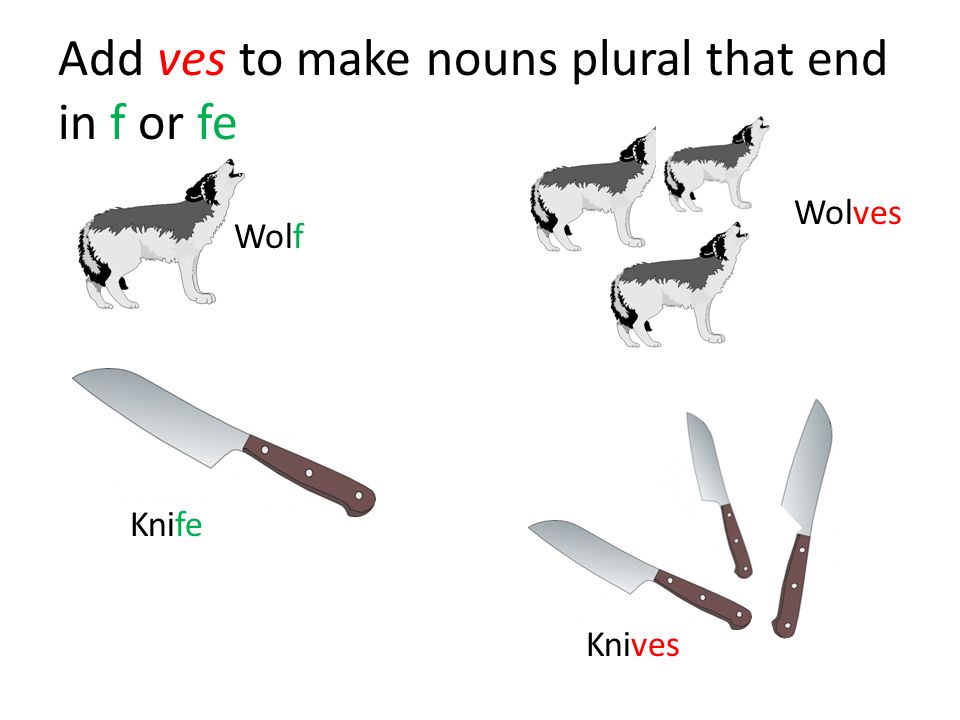 Add ves to make nouns plural that end in f or fe