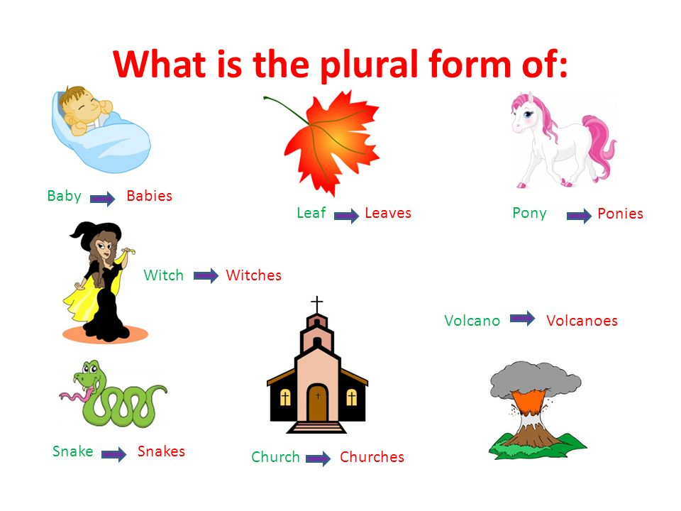 What is the plural form of: