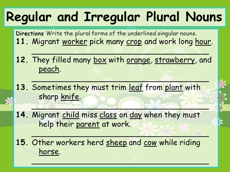 Regular and Irregular Plural Nouns - ppt video online download