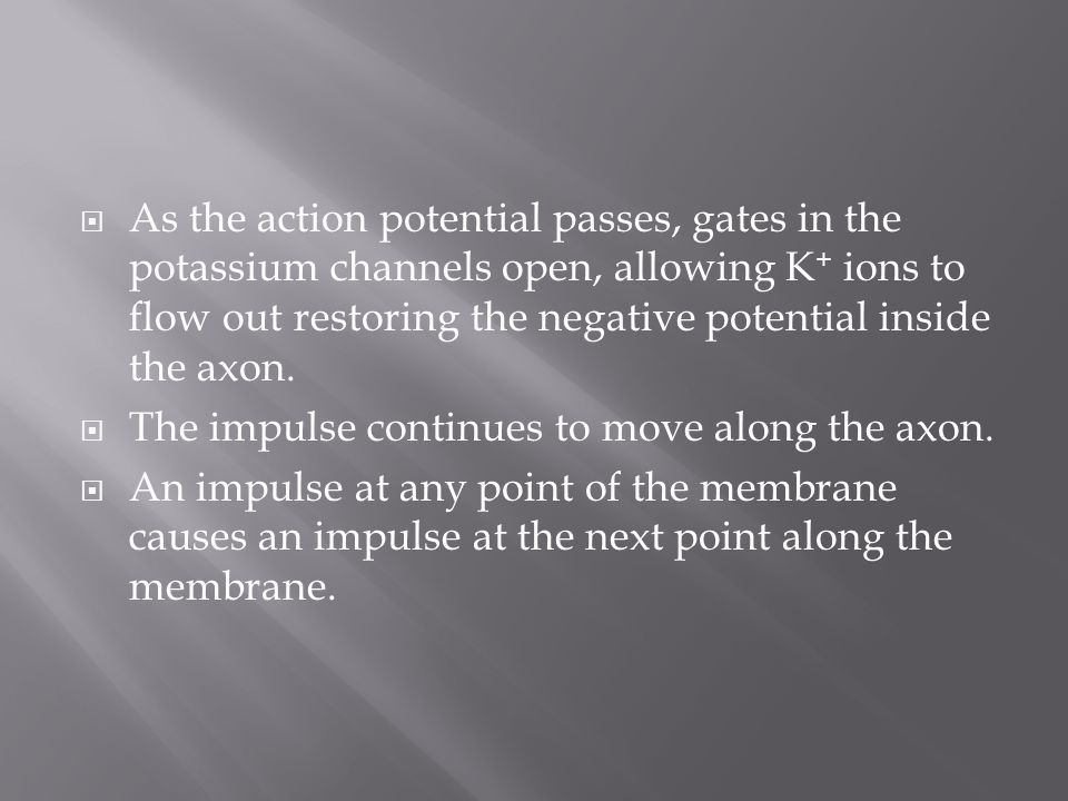 As the action potential passes, gates in the potassium channels open, allowing K+ ions to flow out restoring the negative potential inside the axon.