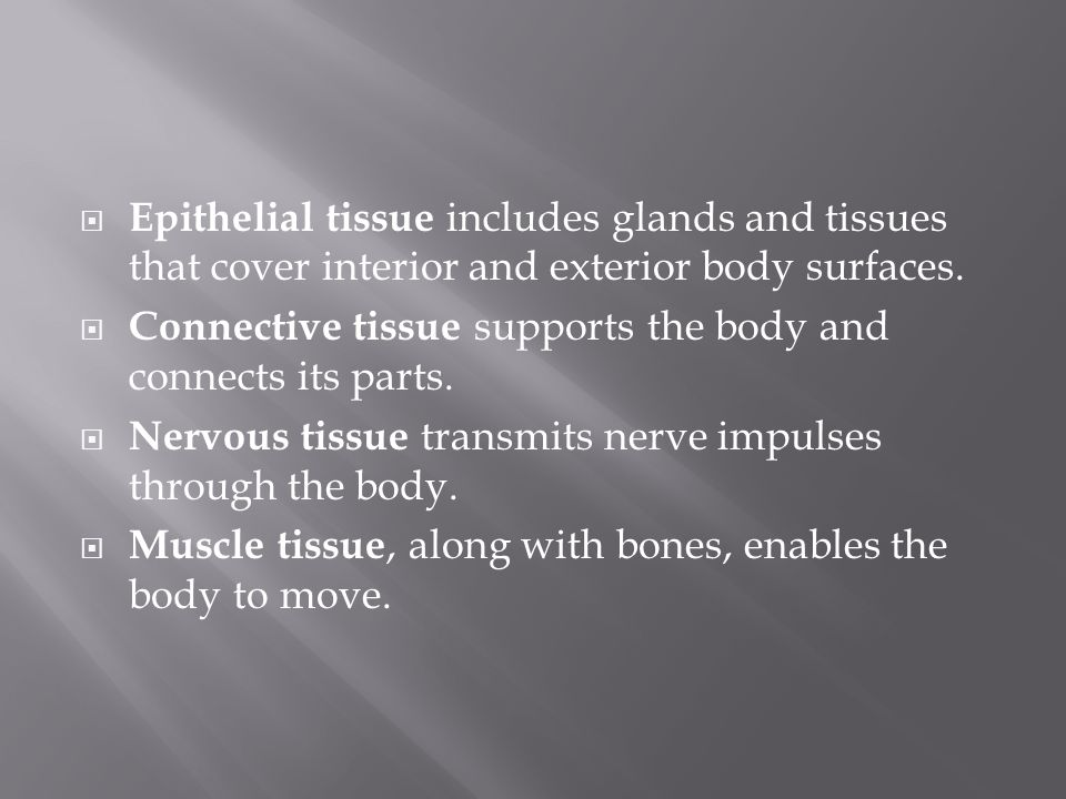 Epithelial tissue includes glands and tissues that cover interior and exterior body surfaces.