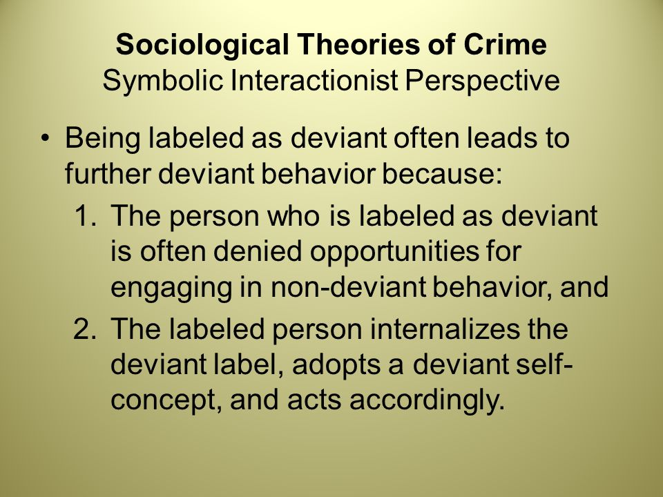 Chapter 3 Crime And Social Control Ppt Download
