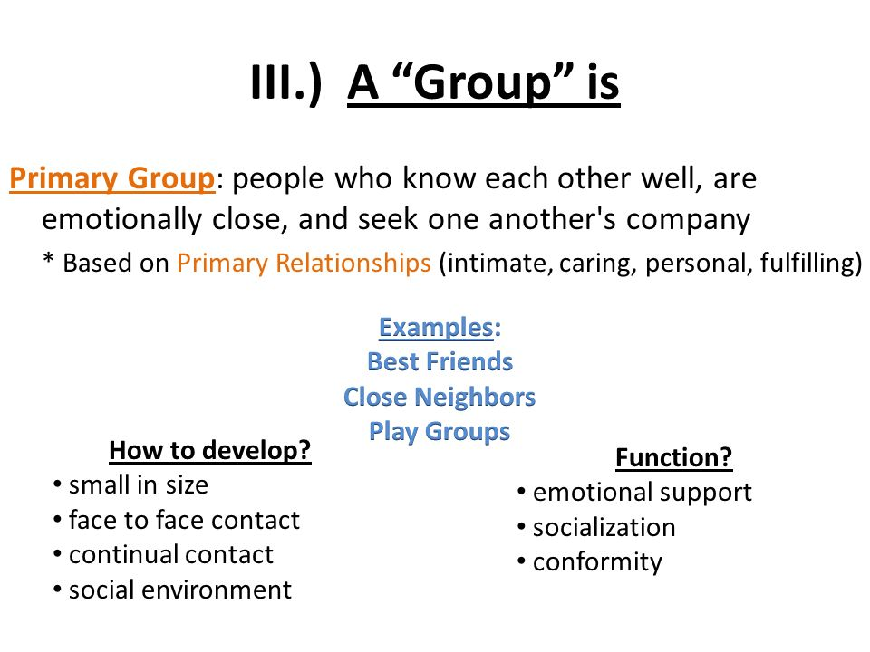 primary group examples