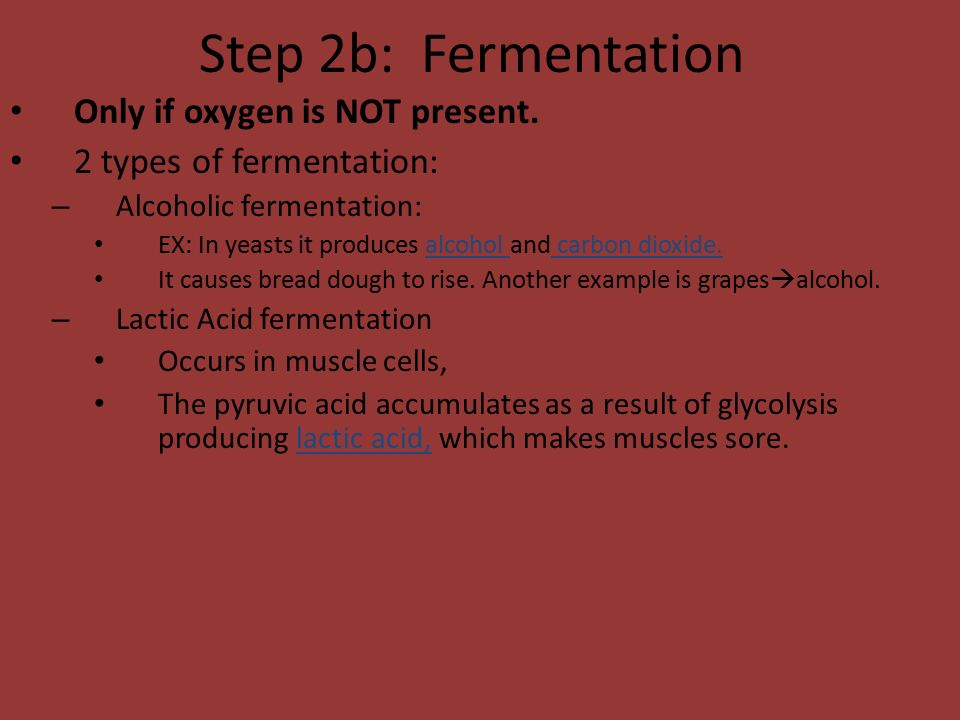 Step 2b: Fermentation Only if oxygen is NOT present.