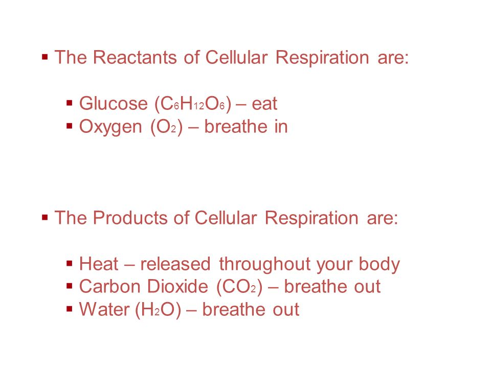 The Reactants of Cellular Respiration are: Glucose (C6H12O6) – eat