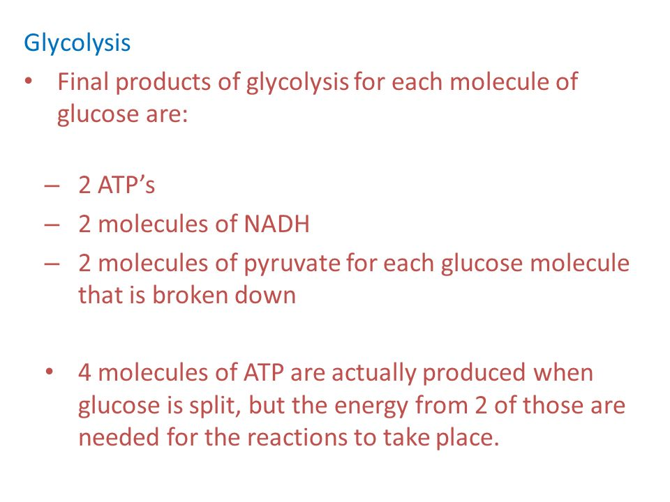 Glycolysis Final products of glycolysis for each molecule of glucose are: 2 ATP's. 2 molecules of NADH.