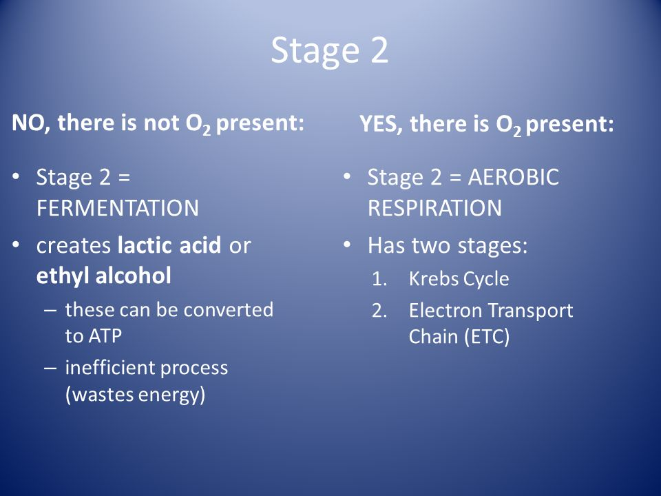 Stage 2 NO, there is not O2 present: YES, there is O2 present: