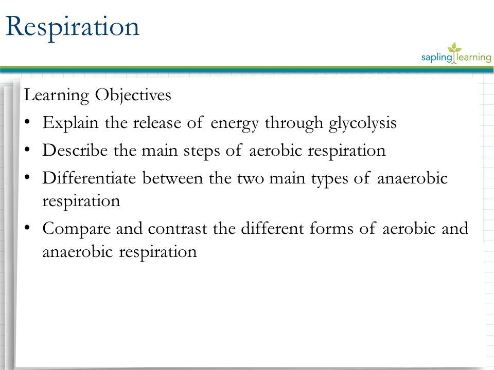 glycolysis explanation
