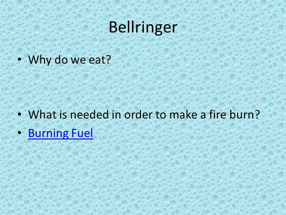 Bellringer Why do we eat What is needed in order to make a fire burn