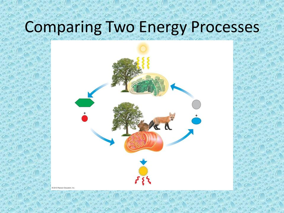 Comparing Two Energy Processes