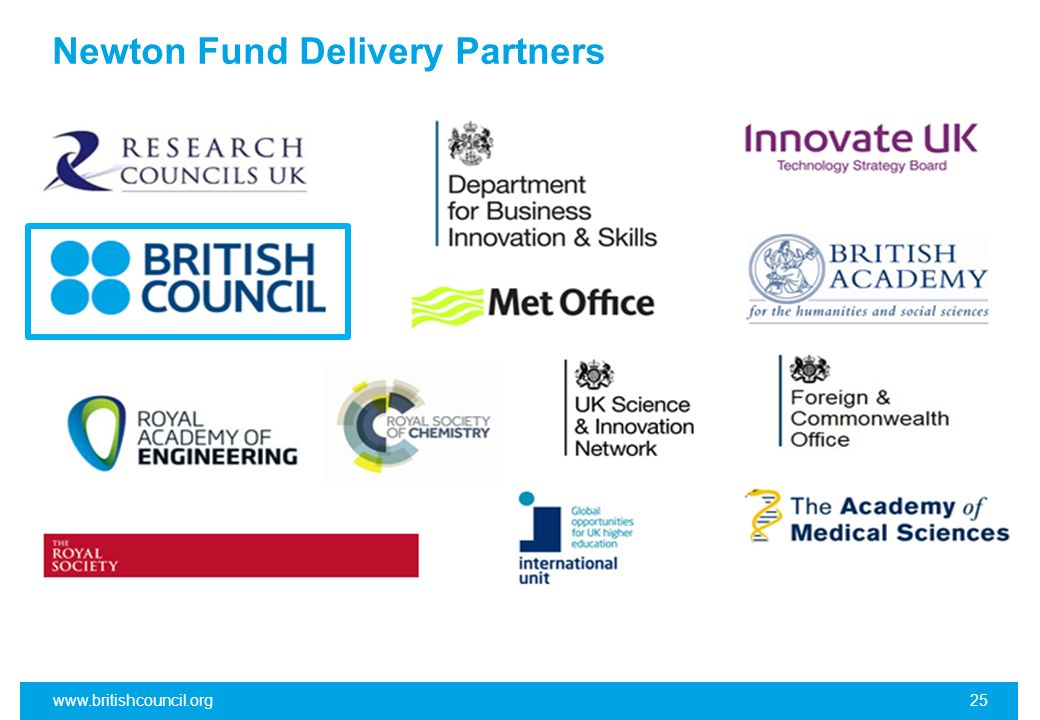 Newton Fund Delivery Partners