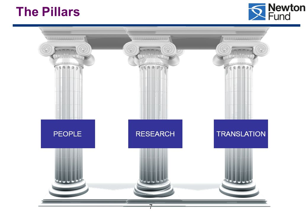 The Pillars PEOPLE RESEARCH TRANSLATION 7